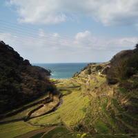 北部九州旅行2日目:浜野浦の棚田 - 原付で九州一周