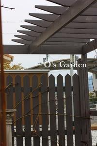 O's Garden 便り No. 128 ♪ <3月8日> - O's garden へ ようこそ~ ♪