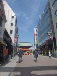 お茶の水駅~神田明神散策(2)と庭園の花木 - 活花生活(2)