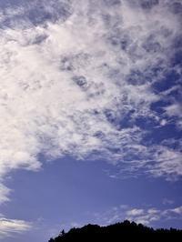 大雪警報!  創生、咲かそう、耕す・・・議会に行こうよ! - 朽木小川より 「itiのデジカメ日記」 高島市の奥山・針畑郷からフォトエッセイ