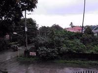 まだ雨季のようです - 南の島より・・・