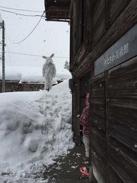 豪雪に生きる - A Perfect Day for Nemuribuka