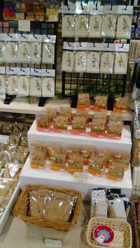 東急ハンズ梅田店常設ブース『インコと鳥の雑貨展』ヒヨドリコトリミニ特集 - 雑貨・ギャラリー関西つうしん