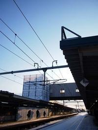 3月8日 今日の写真 - ainosatoブログ02