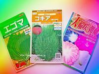 """""""日本から、買ってきた種!(愚) プランター菜園♪2017年① """" ~ 春バージョン・4月「種の記録」(笑) ~ - ROMA  - PhotoBlog -"""