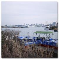 #2123 マリンタワーが見えた - at the port