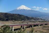 一仕事が終わったので静岡まで - 光さんの日常