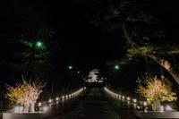 東山花灯路~色々散策 - 鏡花水月