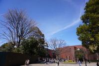 上野公園、春を探してお散歩 1 - Let's Enjoy Everyday!