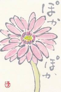 ガーベラ 「ぽかぽか」 - ムッチャンの絵手紙日記