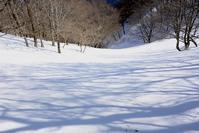 春を待つ木々  池木屋山 - 峰さんの山あるき