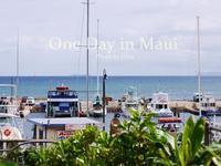 マウイの休日(8) ビーチサイドをドライブ - Cucina ACCA
