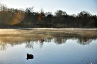 今朝の見沼自然公園(さいたま市) - 暢気おやじの「ピンボケ日記」