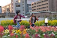 都会の中のガーデン - nyaokoさんちの家族時間