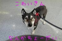 病院の日 - HAMAsumi-Life