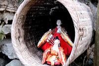 山里のお雛様 - suzume