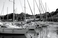 春惜月 寫誌 ⑩ scene of yacht harbor - le fotografie di digit@l