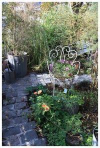 石をはった素敵な庭 - natu     * 素敵なナチュラルガーデンから~*     福岡県で庭の施工、外構造りをしてます