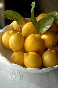 庭のレモンの収穫♪ - 横浜・フランス&世界旅の料理教室 ~うららの味な旅 味な日々~