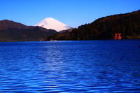 29年3月の富士(11)芦ノ湖の富士 - 富士への散歩道 ~撮影記~