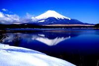 29年3月の富士(10)番外編 追想の富士 - 富士への散歩道 ~撮影記~