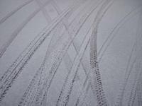 3月10日 今日の写真 - ainosatoブログ02