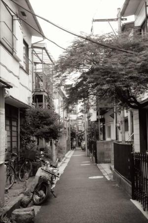 路地も好きなので  side streets - サイレントなムービー  movie of the silence