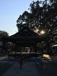 3/11  おはよう家族散歩 - Re-member  Diary