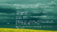 岬の春  東京カラス  - 東京カラスの国会白昼夢