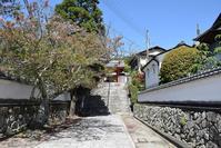太平記を歩く。 その36 「太山寺・太山寺城跡」 神戸市西区 - 坂の上のサインボード