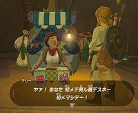 WiiU版「ゼルダの伝説 ブレス オブ ザ ワイルド」雑記:カカリコ村からハテノ村へ - ゴチログ GOTTHI-LOG