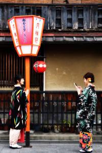 春美人が京都に春を呼ぶ♯1 - あ お そ ら 写 真 社