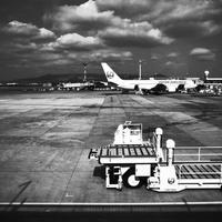 #578 〜伊丹空港〜 - カメラを相棒に
