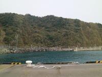 大島椿祭り - からっ風にのって♪