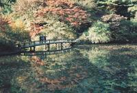 神戸森林公園 - photomo