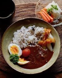 今日の昼ごはん(レトルトカレー、糠漬け) - 青蓮亭日記