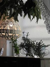 お洒落空間作り  & 軟膏=バーム - 心とカラダが元気になるアロマ&ハーブ・ガーデンの教室chant rose