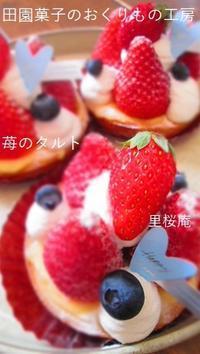 君津のおいしい苺!! - 田園菓子のおくりもの工房 里桜庵