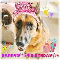 ☆Happy Birthday☆ - ** Hiwahiwa ohana **