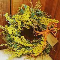 2017.2 mimosa wreath lesson - オルネのフラワーレッスン