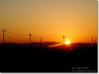 【ゆ】夕焼け:ゆうやけ - ネコニ☆マタタビ