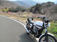 伊豆ツーリング - なんでバイクに乗るのでしょう?
