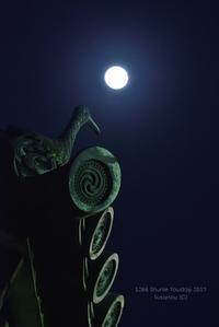 月夜の鵜 @ 1266回 修二会 - 東大寺が大好き