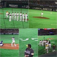 3月12日  オープン戦 - さ・ん・ぽ道