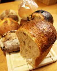 10年間ありがとう、かいじゅう屋さん♡ - パンある日記(仮)@この世にパンがある限り。