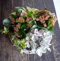ご出産のお祝いに。鉢花の寄せ鉢。東札幌2条にお届け。 - 札幌 花屋 meLL flowers