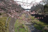 春?! - Landscape2