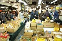 日本人はマグロが大好き。千住魚河岸で取材しました(中央卸売市場、足立市場) - 旅プラスの日記