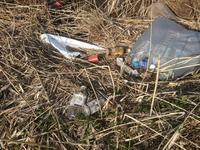 木場潟清掃活動のお知らせ - ハム蔵の石川県バス釣り日記