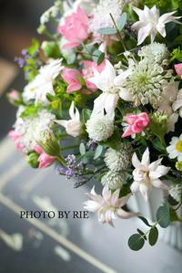 花摘み - ナナイロノート